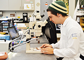 Photo: Hunter Burgess examines ceramics under a microscope